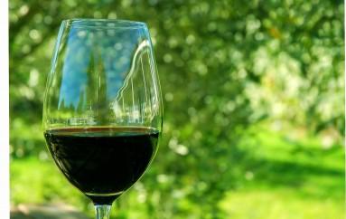 Chianti … el sabor de la Toscana