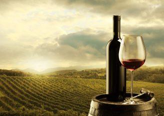 Wino Politics