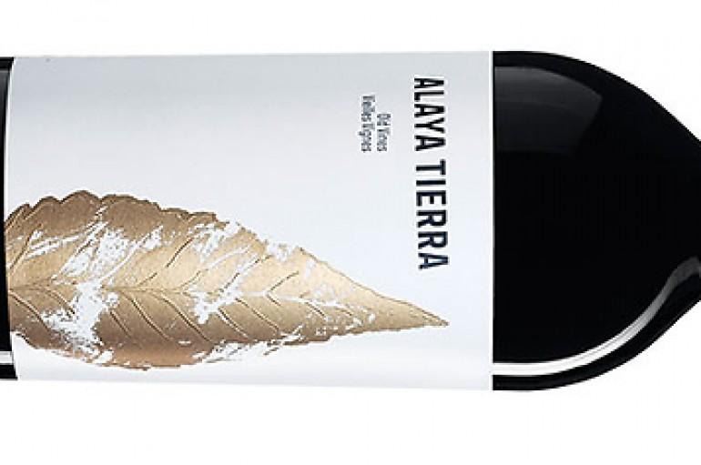 El mejor vino de España es de Almansa